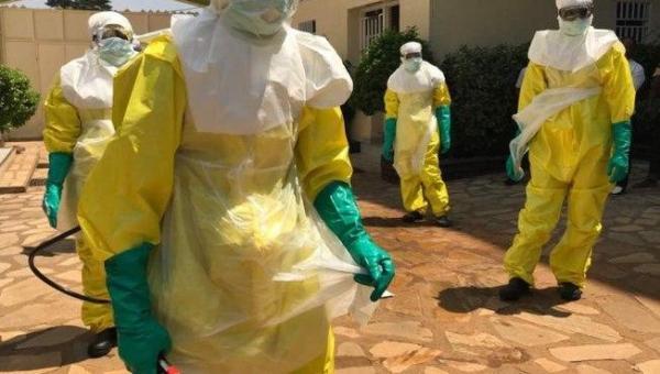 CAOS: Vírus mortal pode vir de floresta, diz cientista que descobriu o Ebola