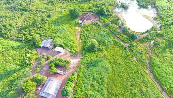 Fazenda à venda com 157 alqueires no município de Ananás, campos planos destinado agricultura e pecuária, rica em água e muito mais