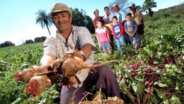 MP libera R$ 500 milhões para aquisição de alimentos, CNM sugeriu a medida