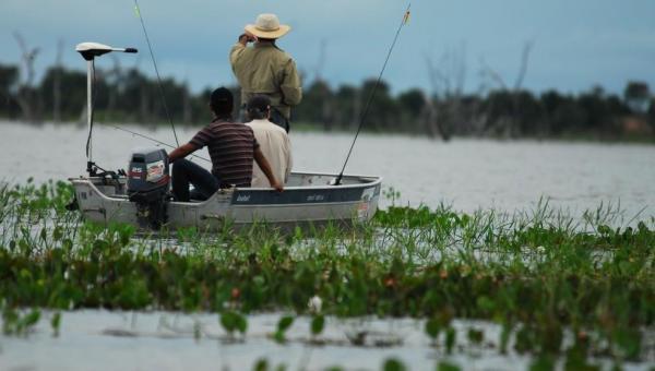 Piracema termina neste domingo (28) no Tocantins; veja quais restrições seguem em vigor