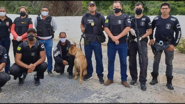 Polícia encontra drogas enterradas em quintal da casa de suspeitos de matar homem em Goiás