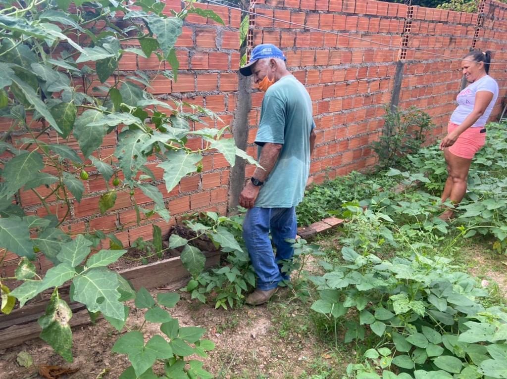 Secretaria de Assistência Social lança Projeto Horta Comunitária no Quintal em Arapoema